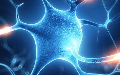 Neuroplasticity:  A New Tool
