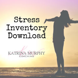 stress inventory